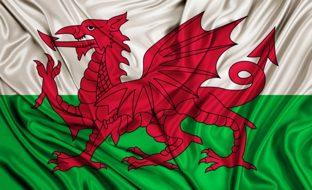 Wales flag - silk texture